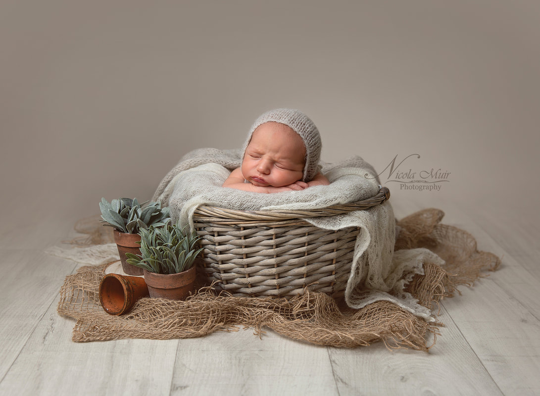 5983c5a6c09cc Newborn sessions ideally take place when your baby is between 10-14 days old  as this is when they are most sleepy and able to curl up in to those  adorable ...